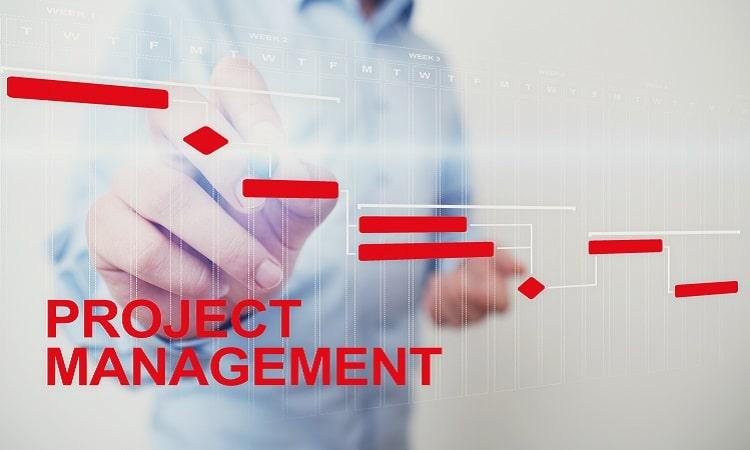 Projektmanagement nach GPM/IPMA